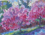 Cherry Trees, West Orange