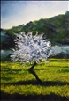 Almond Tree in Blossom<br>Oil on Canvas, Paintings