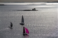 Purple Sail<br>Photograph on Hahnemühle Paper, Photography