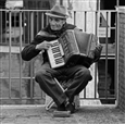 Italian Accordian<br>Photographic Print on Aluminum, Photography
