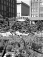 Highline View<br>Platinum/Palladium Photograph, Photography