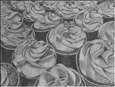 Cupcakes<br>Graphite on Paper, Drawings