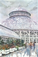 The Conservatory<br>Watercolor on Paper, Paintings
