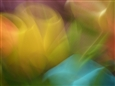 Composition for Yellow<br>Pigment Print on Fine Art Paper, Prints