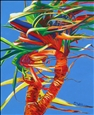Tropical Pandanus<br>Giclee Print on Canvas, Prints