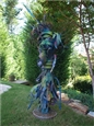 Garden Series-Sprout<br>Mixed Media Sculpture, Sculpture
