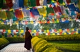 Prayer Flags in Nepal<br>Photographic Print on Dibond, Photography